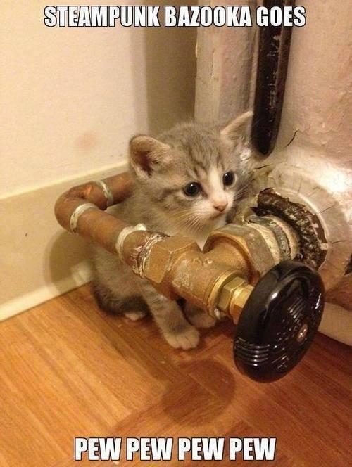 cute kitten steampunk meme